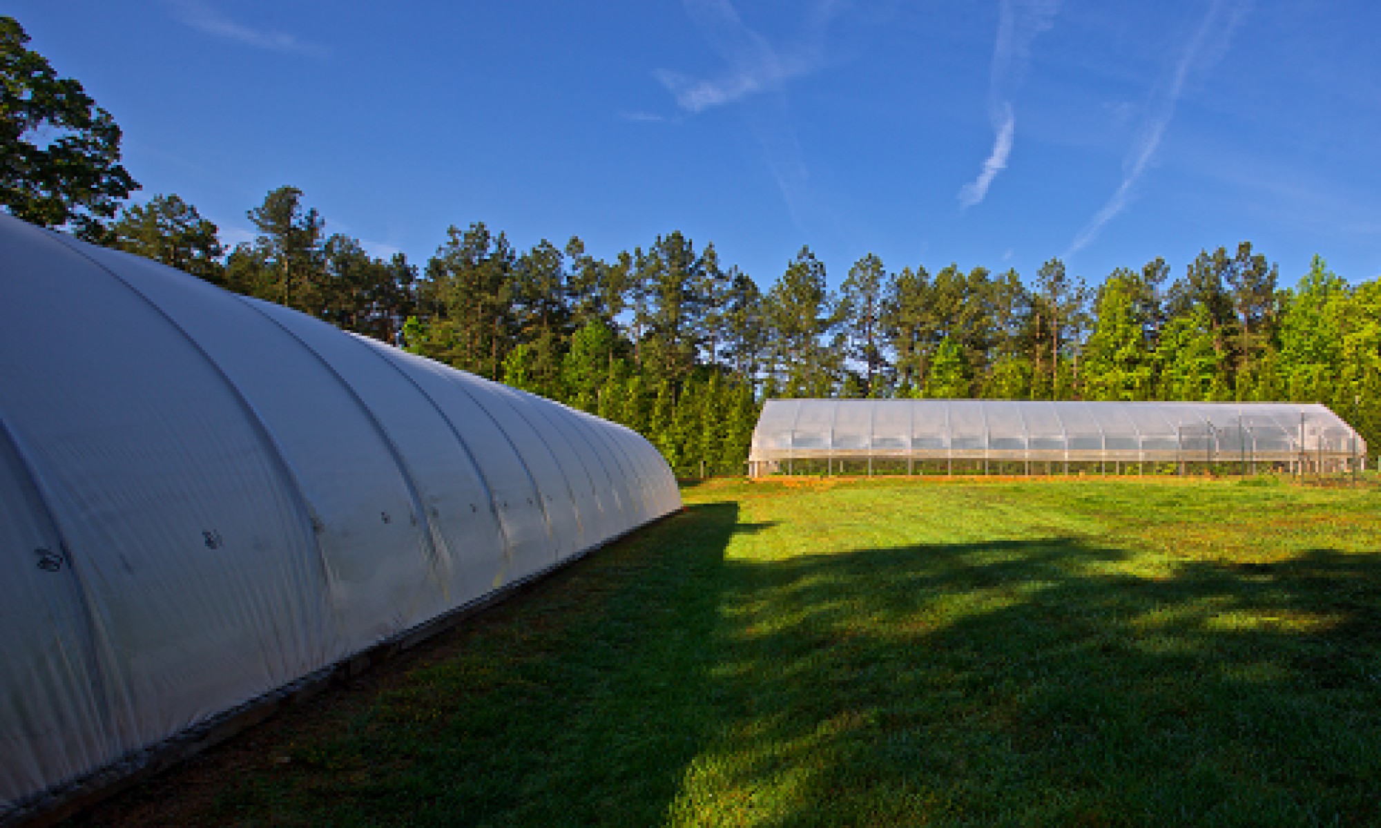 Tiny Farm System